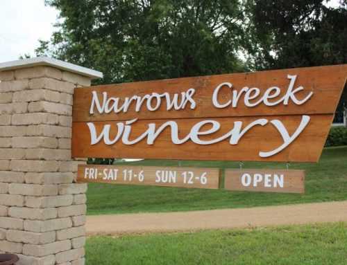 Narrows Creek Winery with St Peter's Youth Group & Artist Suanne Cepek