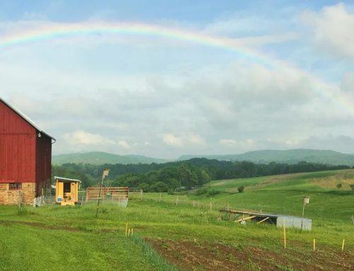 McWilliams Heritage Farm